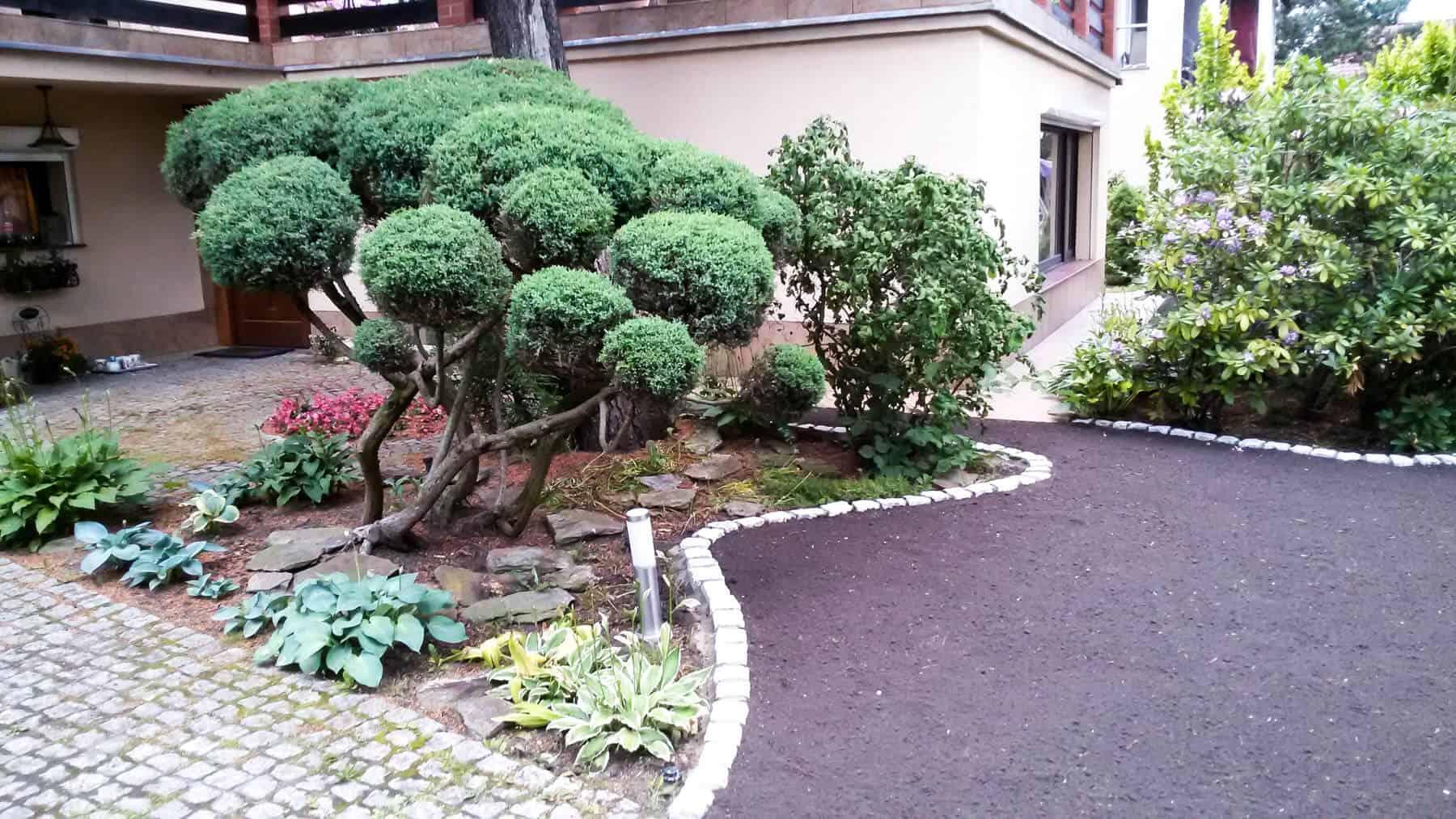 Zakładanie ogrodów Mosina