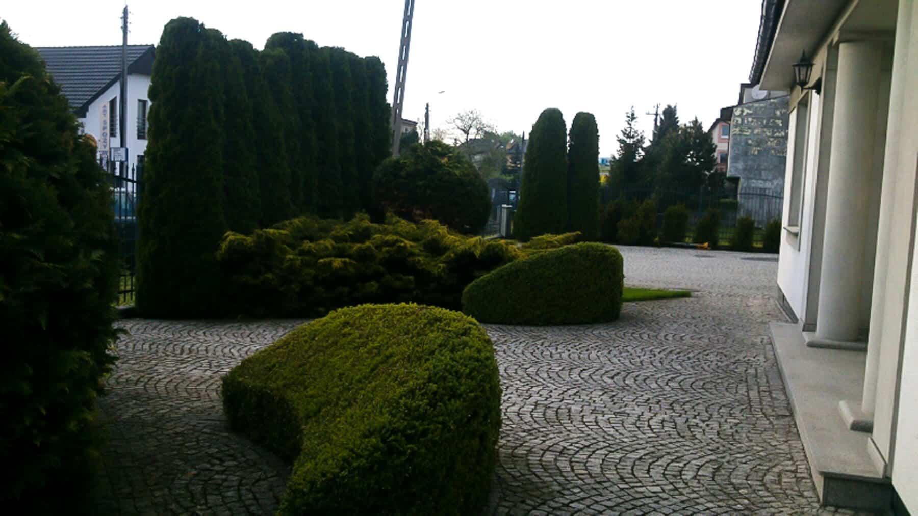 Zakładanie ogrodów Dąbrówka