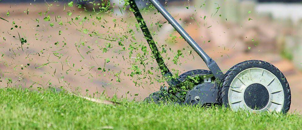 Trawnik – jak, czym i kiedy kosimy nasz trawnik aby zawsze elegancko się prezentował?