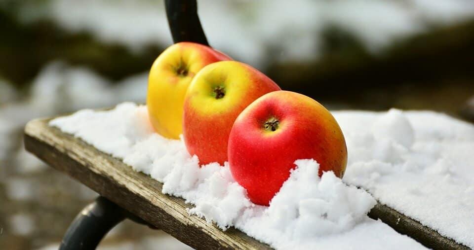 Kilka sprawdzonych sposobów na ogród dekoracyjny zimą.