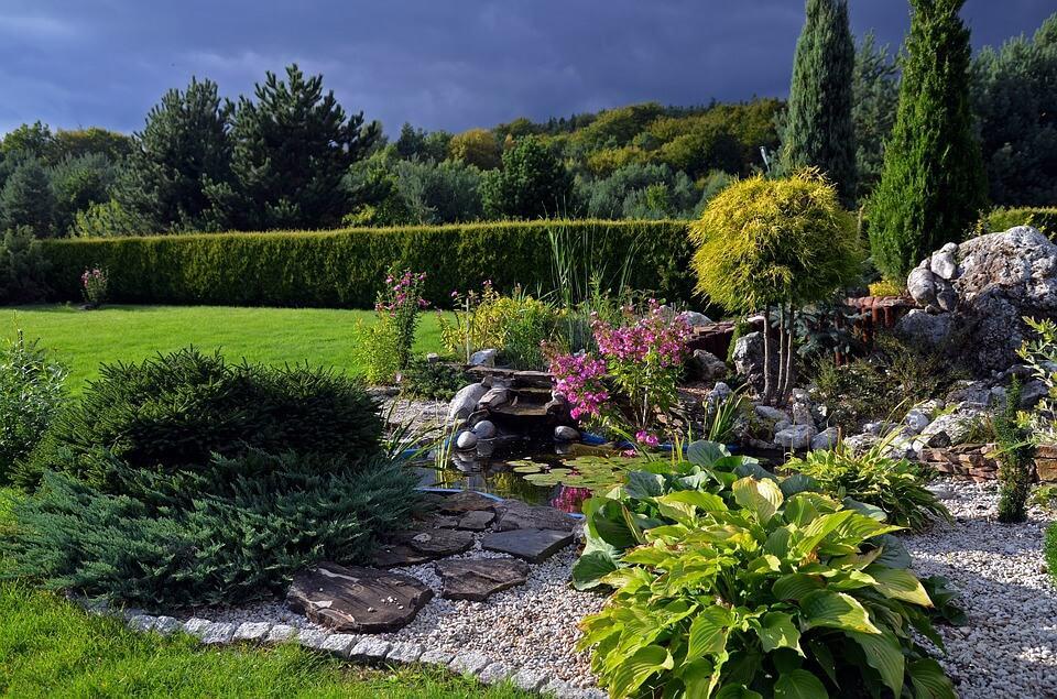 Rośliny na skalniaki – jak je pielęgnować w naszym ogrodzie?