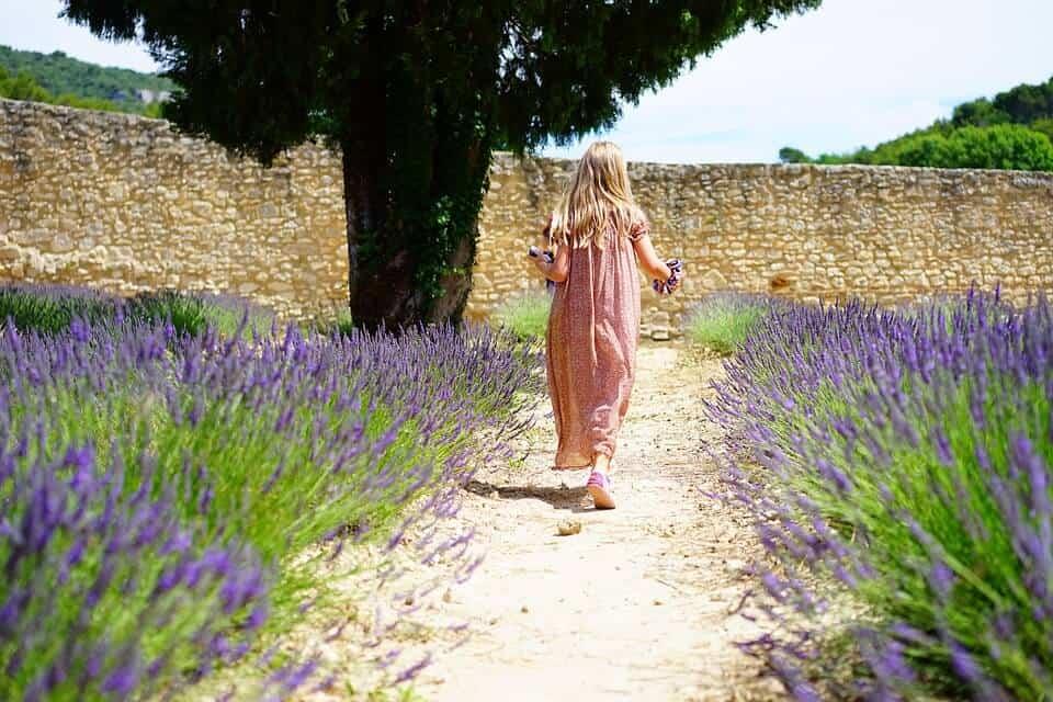 Wiosna 2019 – zaplanuj swój wymarzony ogród już teraz!