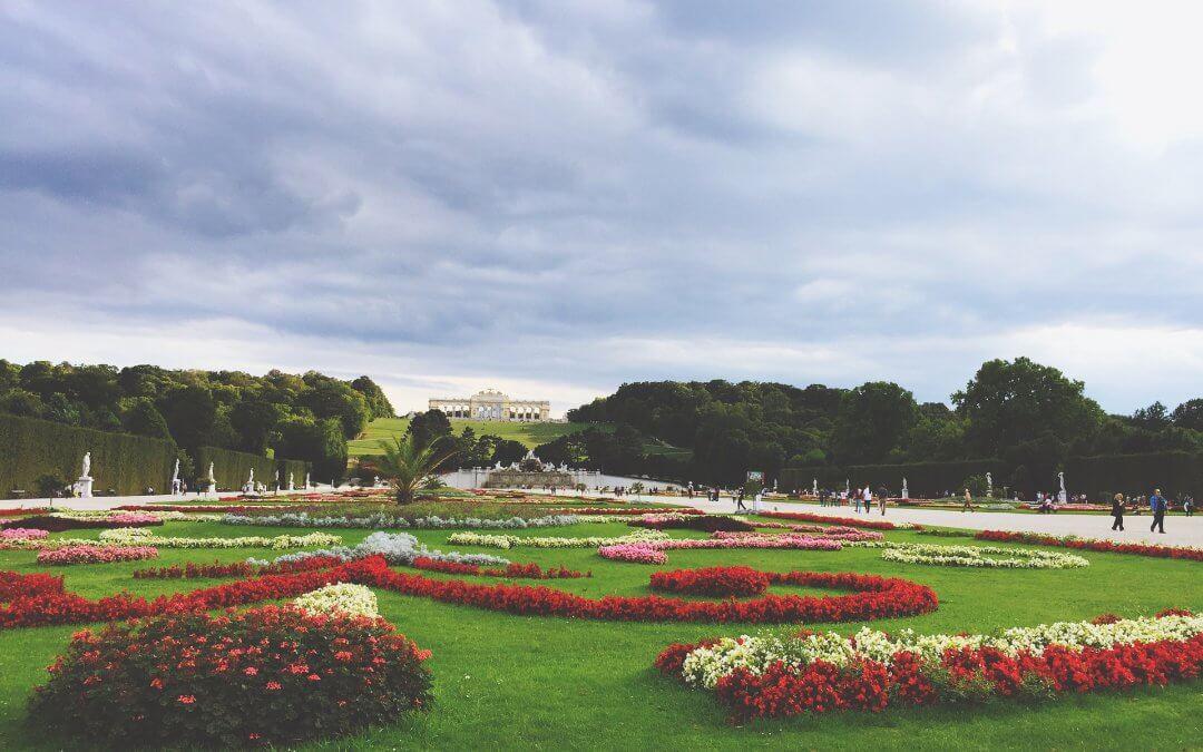 Blog - ZAKŁADANIE OGRODÓW - Projektowanie i zakładanie ogrodów. Zakładać samodzielnie, czy z pomocą firmy ogrodniczej?