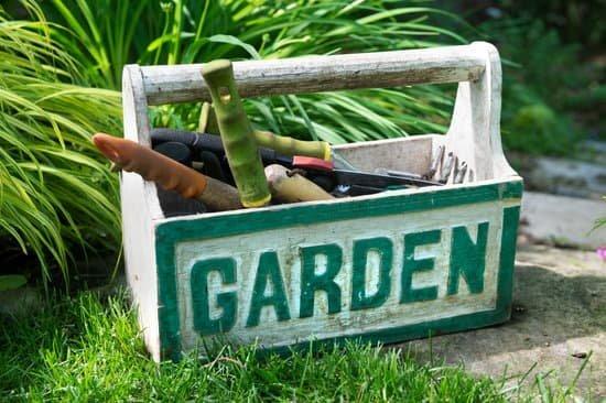Blog - ZAKŁADANIE OGRODÓW - Prawidłowa kolejność prac przy zakładaniu ogrodów.