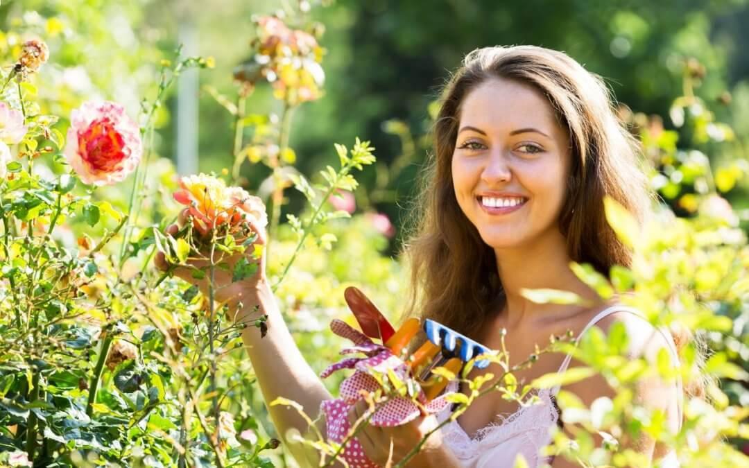 Pielęgnacja ogrodów latem