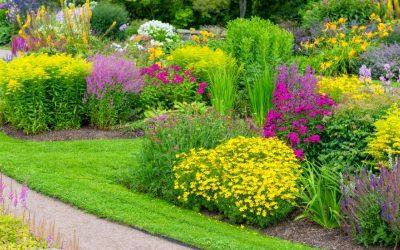 Kluczowe błędy podczas urządzania ogrodów