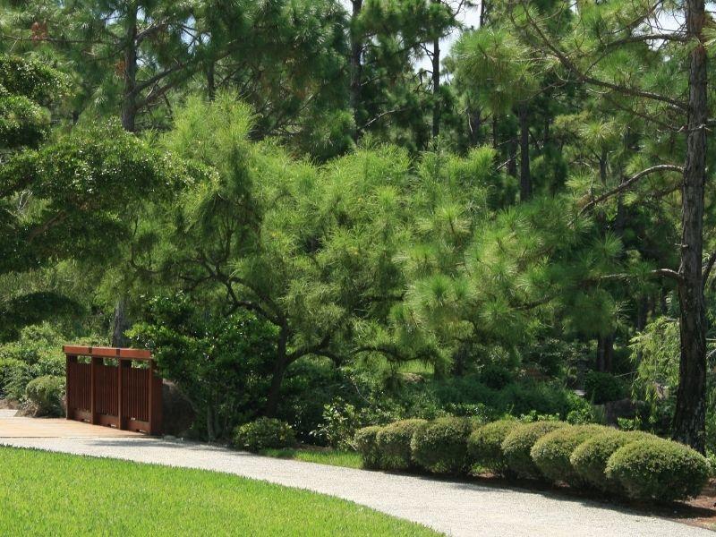 Ścieżki żwirowe w ogrodzie – jak zbudować i pielęgnować ogrodową ścieżkę żwirową