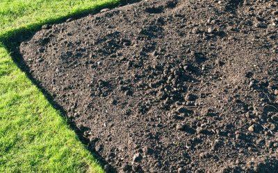 Gleba w ogrodzie, jak zadbać o nią naturalnie.