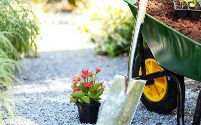 W jaki sposób wytyczać alejki w małych ogródkach.